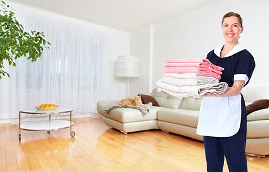 haushaltshilfe reinigung von privatwohnungen und b ros. Black Bedroom Furniture Sets. Home Design Ideas